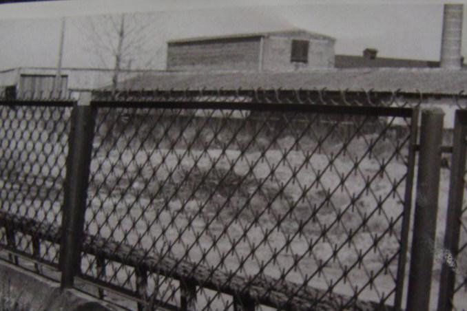 Fotografia z 1987 roku. Widać główny budynek cegielni, suszarnie oraz stację kolei wąskotorowej.