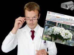 Złowieszcza przestroga szpitala: biada złodziejowi kwiatków, jeśli trafi do PCM