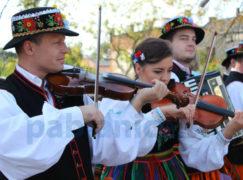 Poszukiwani muzycy i tancerze