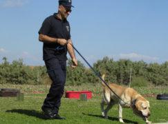 Miasto kupi policji psa do wykrywania narkotyków?