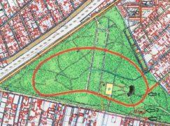 Park Wolności już wkrótce będzie oświetlony