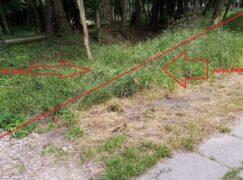 Koszenie trawy bywa skomplikowane